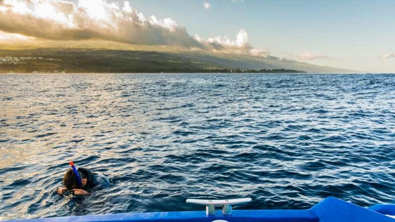 à la rencontre des baleines 974