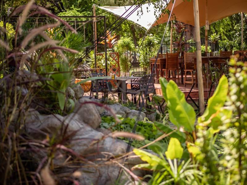 Vert tu oses : épicerie et restaurant écoresponsables à La Saline les Bains 974