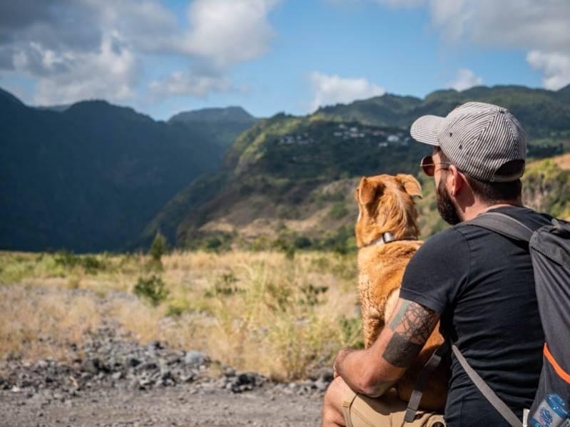 Randonner dans Mafate avec son chien : nos 5 conseils ! 974