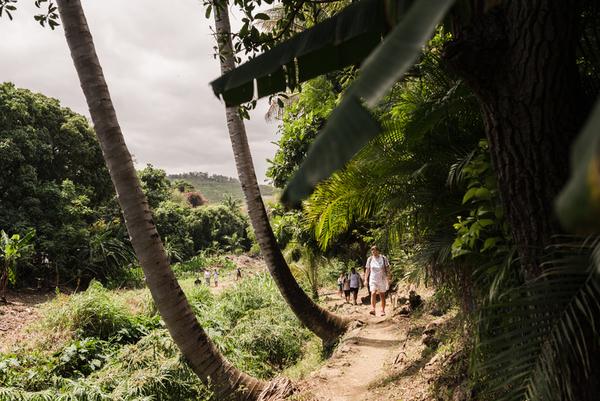 La ravine Saint-Gilles à l'ile de La Réunion 974