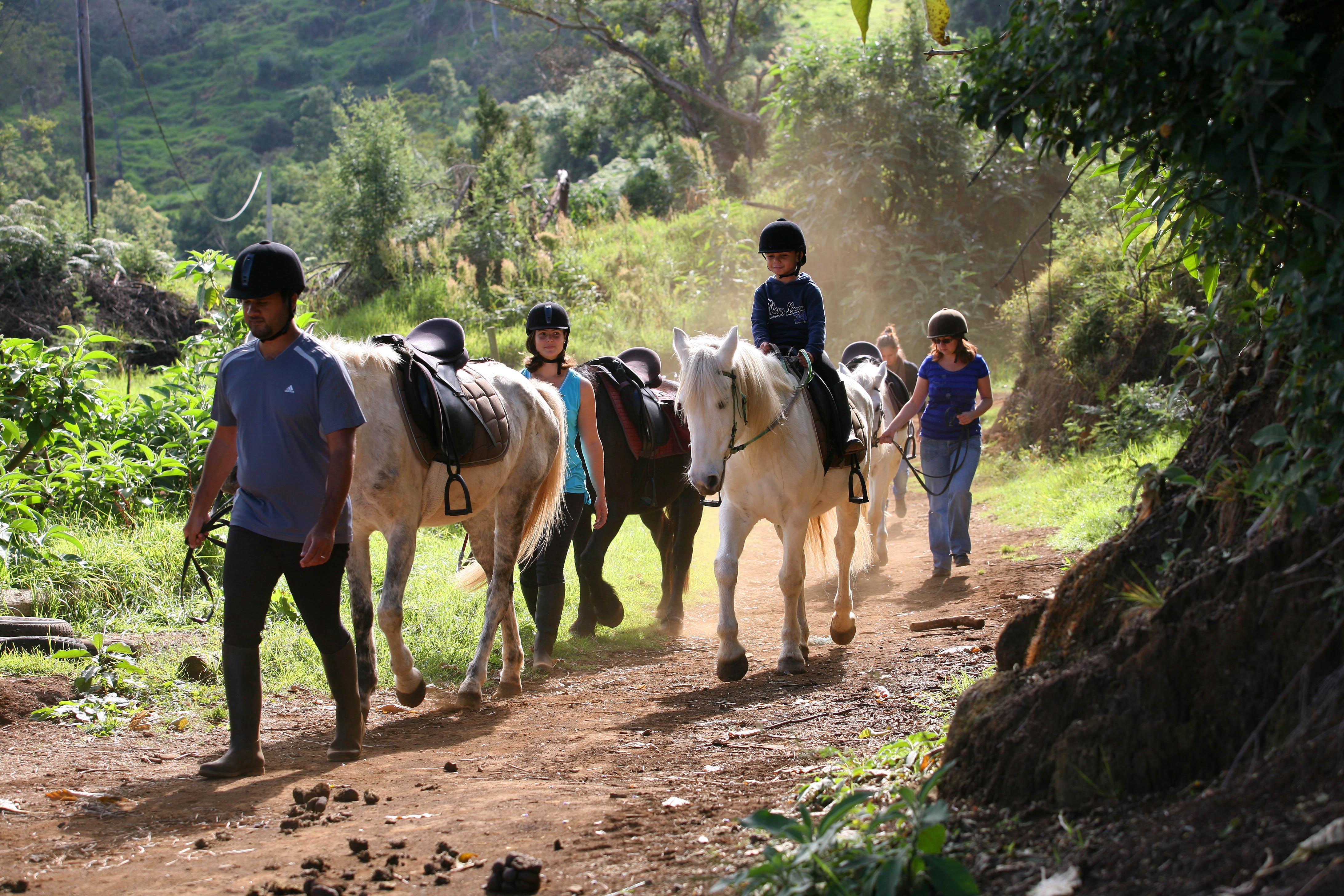 balade a cheval en famille a l'ile de La Reunion 974