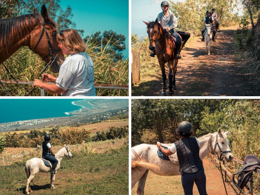 balade à cheval dans les hauts de La Réunion