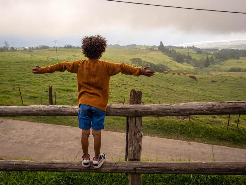 vue sur le littoral depuis les hauts de l'Ouest de l'ile de la Réunion