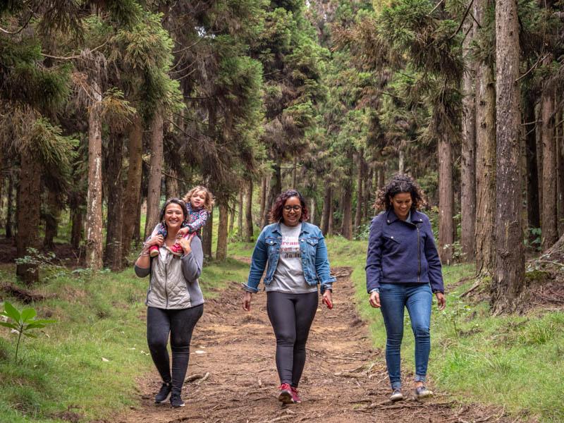 balade en forêt en famille à l'Ile de la Réunion