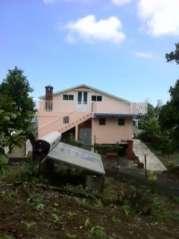 FERME DE PIVETEAU HONEY 974 Trois-Bassins 974