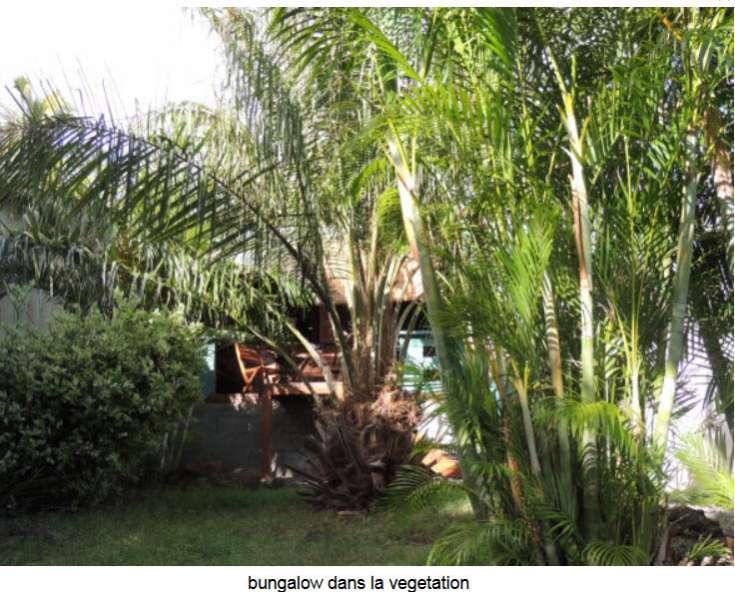 BUNGALOW LE GECKO Saint-Leu 974