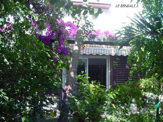 BENGALI 3 (LE) Saint-Gilles 974