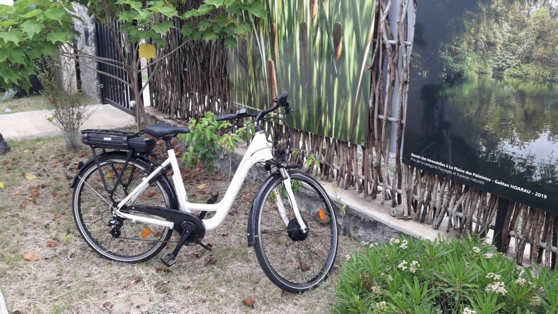 Location de vélo électrique etang saint paul Reunion 974