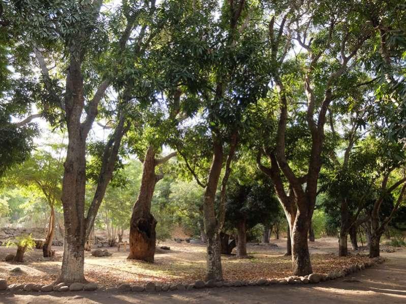 Le parc naturel Rhoston au coeur de la ville de La Possession ile de La Réunion 974