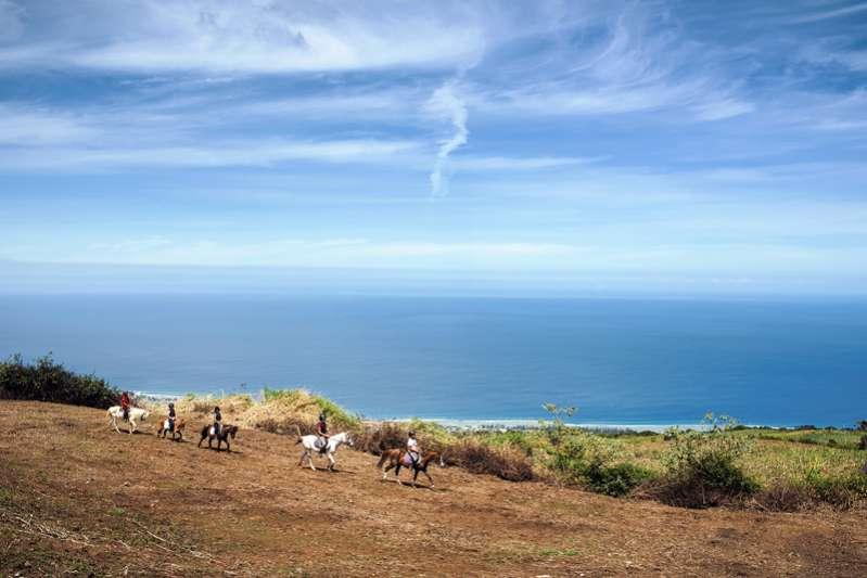 S'organiser dans la fraîcheur des Hauts de l'Ile de La Réunion 974