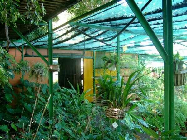 jardin botanique de l'oasis du couchant 974