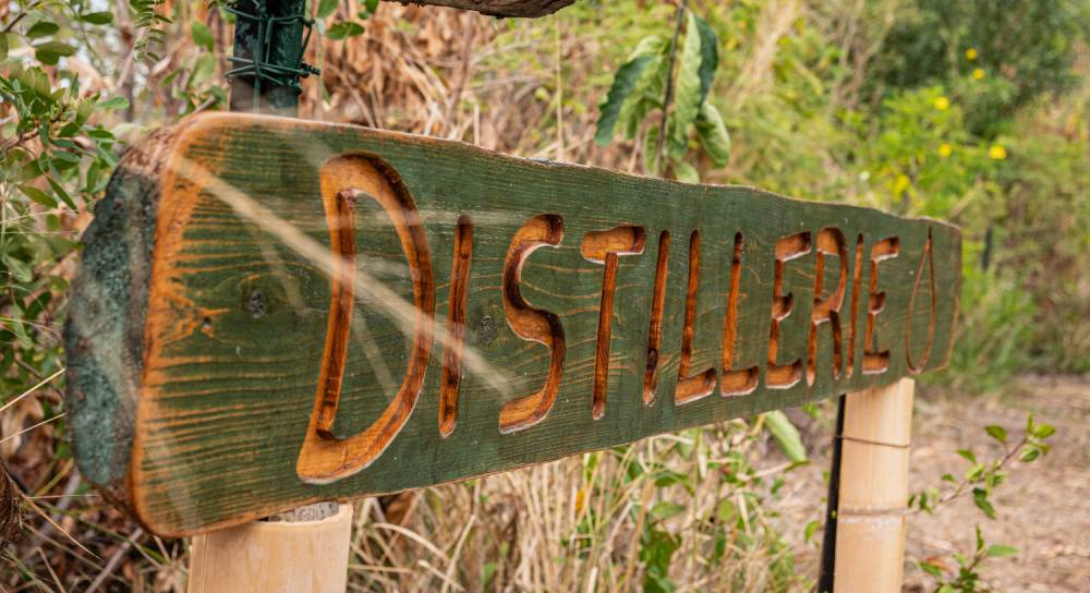 Les distilleries 974