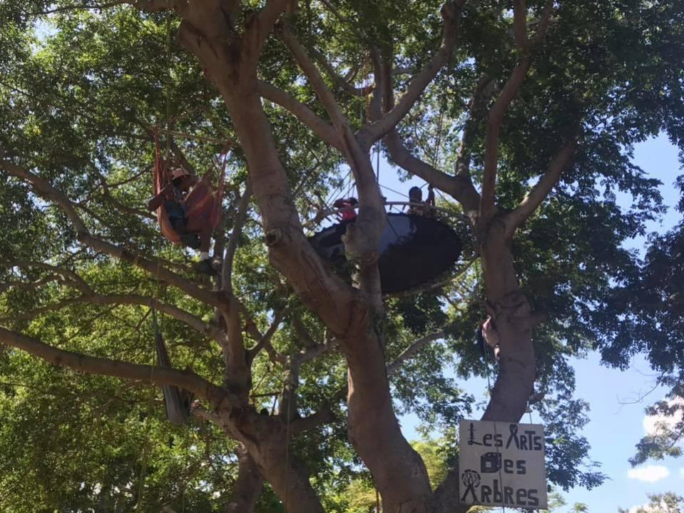 trampoline et hamac dans les arbres avec l'activité grimp'arbre à l'Ile de La Réunion 974