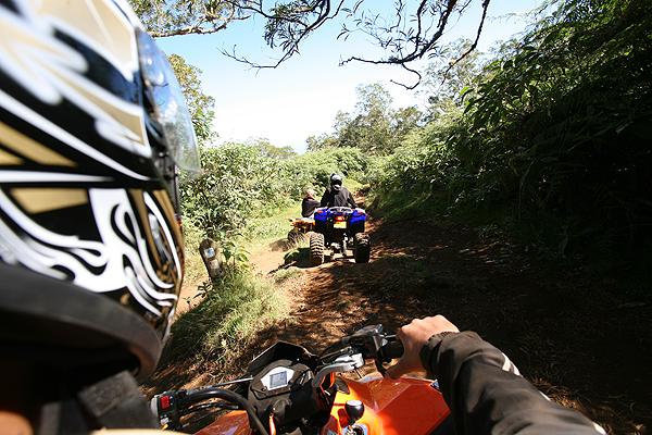 Quad dans la forêt du Maïdo à l'ile de La Réunion 974