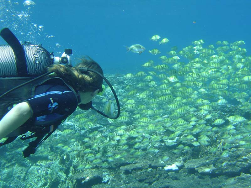 Plongeuse à l'Ile de La Réunion 974