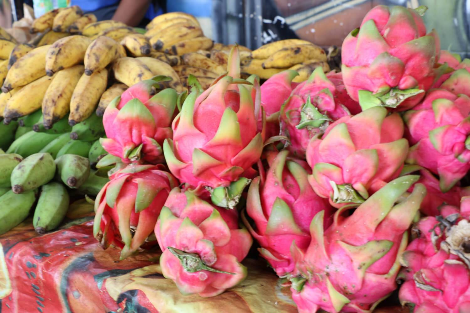 Pitaya sur le marché des producteurs de Saint-Gilles ile de La Réunion 974