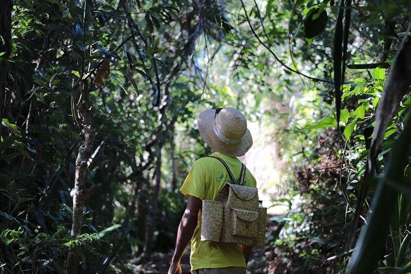 ZARLOR RANDO CULTURE KALLA2BRASDos d'Âne, agenda, les randonnées et les visites guidées, Office de Tourisme, Ouest, La Réunion, Ile de La Réunion, 974