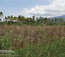 LE DOMAINE DE SAVANNASaint-Paul, agenda, les randonnées et les visites guidées, Office de Tourisme, Ouest, La Réunion, Ile de La Réunion, 974
