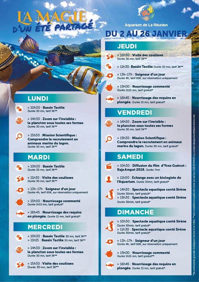 LES ANIMATIONS VACANCES DE L'AQUARIUMPort de Plaisance, agenda, L'actu des musées, Office de Tourisme, Ouest, La Réunion, Ile de La Réunion, 974