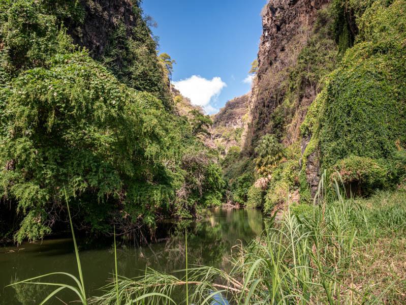 Ravine Bernica Saint-Paul ile de La Réunion 974